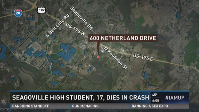Seagoville student, 17, dies in crash
