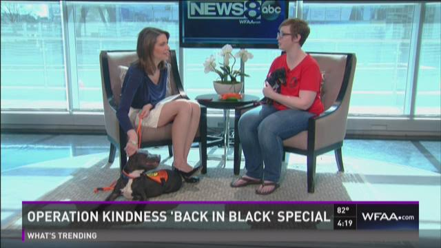 Operation Kindness 'Back in Black' special