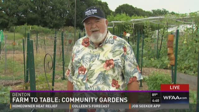 Farm to Table: Denton community garden is the largest in the country